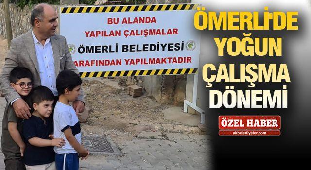 Ömerli'de Başkan Altındağ çalışmaları inceledi