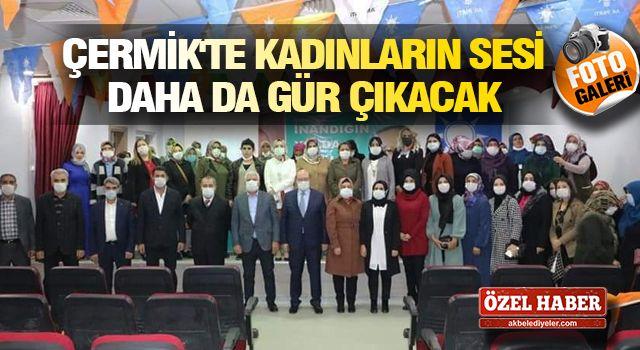 Çermik'te Başkan Karamehmetoğlu AK Kadınlara seslendi