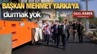 ŞIRNAK'TA YOĞUN ÇALIŞMA HAFTASI