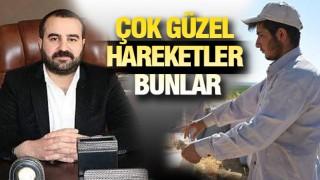 SİVEREK'TEN SEVİNDİREN HABER GELDİ