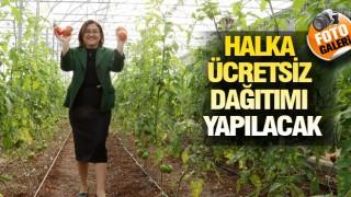 GAZİANTEP'TE 'ŞİFA PAKETİ' UYGULAMASI